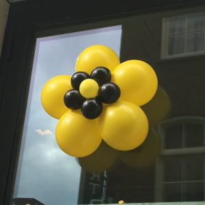 8. Ballonnenbloemen